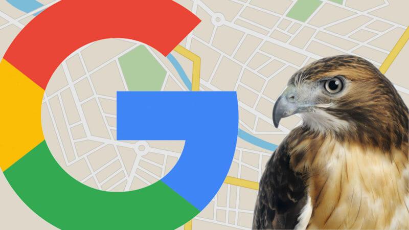 اپدیت الگوریتم عقاب گوگل